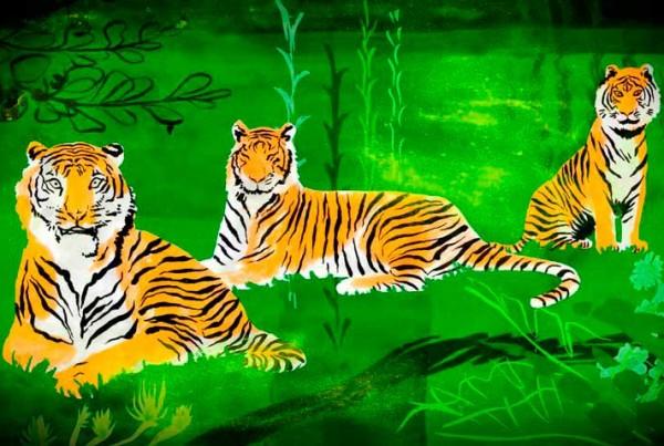 three-tigers